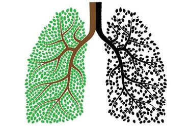 Akciğer Üzerindeki Etkileri